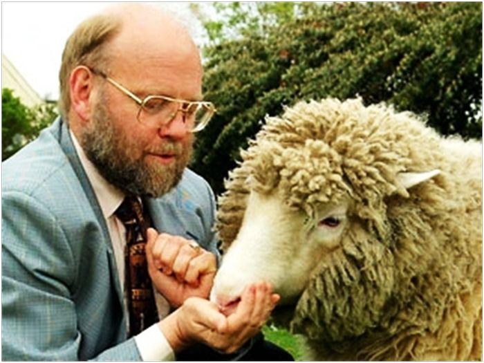 Схема клонирования. Овца Долли