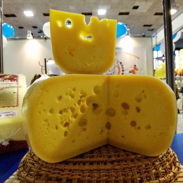 Сыр смешные картинки